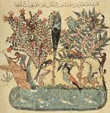 Yahya ibn Mahmud al-Wasiti (Maqamat (assemblies) of the al-Hariri, Scene: The eastern island (39. M
