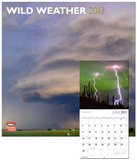 Wild Weather - 2013 Wall Calendar