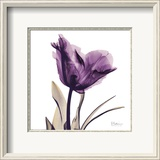 Royal Purple Parrot Tulip Framed Art Print