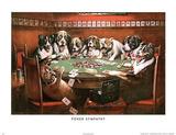 Poker Sympathy Dogs Playing Poker