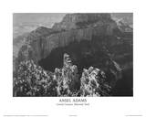Buy Grand Canyon National Park at AllPosters.com