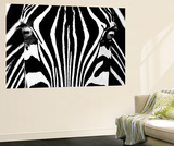 Rocco Sette Black and White Zebra Mini Mural Huge Poster Art Print Wall Mural