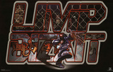 Limp Bizkit (Logo) Music Poster Print