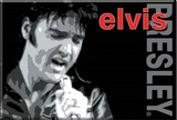 Elvis Presley Singing Locker Magnet