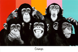 The Chimp Compilation Pop Art Print Poster