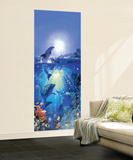 Dolphin in the Sun Giant Mural Poster Wall Mural