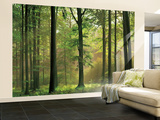 Buy Autumn Forest Huge Wall Mural Art Print Poster at AllPosters.com