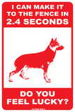 I can make it to the fence  (German Shephard)