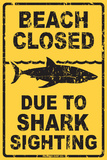 Beach Closed Due to Shark Sighting