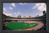 Busch Memorial Stadium St Louis Cardinals Archival Sports Photo Poster Print