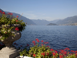 Buy Red Geraniums and Lake, Bellagio, Lake Como, Lombardy, Italian Lakes, Italy, Europe at AllPosters.com