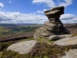 Salt Cellar Rock, Derwent Edge, with Purple Heather Moorland, Peak District National Park, Derbyshi