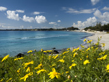 Buy View over Beach in Spring, Fontane Bianche, Near Siracusa, Sicily, Italy, Mediterranean, Europe at AllPosters.com