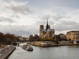 Notre Dame Cathedral on the Ile De La Cite, Paris, France, Europe
