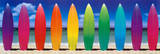 Surf Boards Rainbow