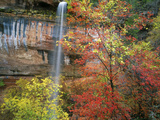 Waterfall with Fall Foliage, Emerald Pools, Zion Canyon, Zion National Park, Utah, Usa