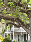 Historic Home with Spanish Moss-Covered Oak Tree, Fernandina Beach, Amelia Island, Florida, Usa