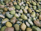 Water-Smoothed Stones on a Beach