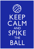 Keep Calm and Spike the Ball Volleyball Poster