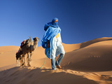 Tuareg Man Leading Camel Train, Erg Chebbi, Sahara Desert, Morocco