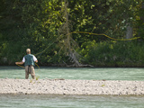 Fly Fishing for Red Salmon on the Kenai River, Kenai Peninsula, Alaska, USA