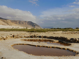 The Salt Pools of the Southern Coast of Socotra, Yemen