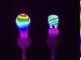 Thermogram of Incandescent and Compact Fluorescent Bulbs