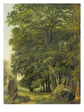 A Wooded Landscape (Oil on Paper on Panel)