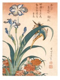 Kingfisher, Irises and Pinks (Colour Woodblock Print)