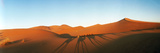 Shadows of Camel Riders in the Desert at Sunset, Sahara Desert, Morocco