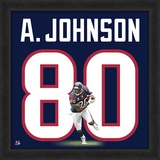 Andre Johnson, Texans representation of the player's jersey