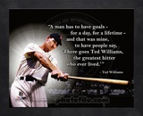 Ted Williams ProQuote