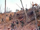 Marines Vietnam