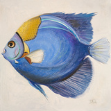 Buy Little Fish III at AllPosters.com