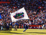 University of Florida - Florida Flag