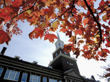 University of Cincinnati - Fall Leaves and McMicken Tower