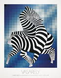 Zebras (Blue) Collectable Print
