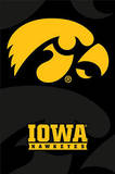 University of Iowa Hawkeyes
