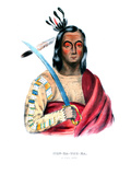 Moukaushka ('the Trembling Earth'), a Yankton Sioux Chief