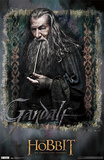 The Hobbit: An Unexpected Journey - Gandalf