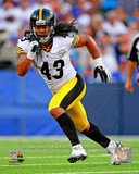 Troy Polamalu 2012 Action
