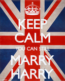 Keep Calm You Can Still Marry Harry