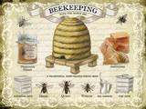 Beekeeping Tin Sign