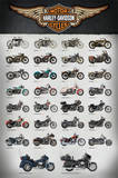 Harley Evolution