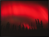 Red Aurora Borealis, Alaska Framed Canvas Print