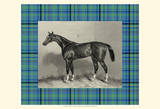 Equestrian Plaid IV Art Print