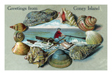 Coney Island, New York - Nautical Scene, Greetings From