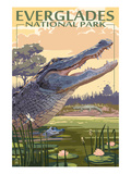 The Everglades National Park, Florida - Alligator Scene Art Print