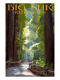 Buy Big Sur, California - Pathway and Hikers at AllPosters.com