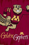 University of Minnesota Golden Gophers NCAA